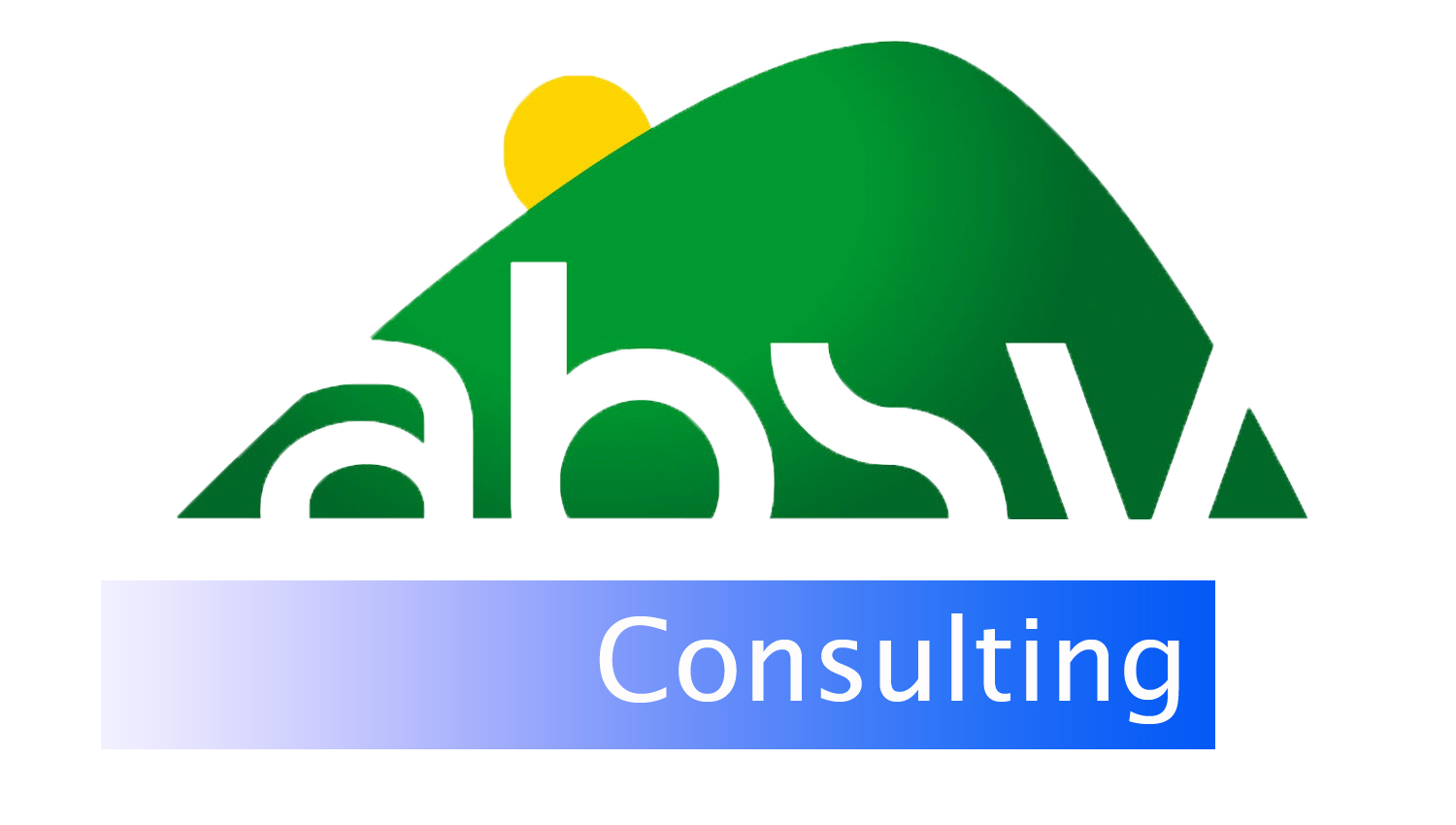 ABSV Consulting